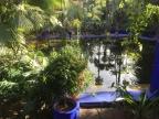 Le Jardin Majorelle, le petit bijou de Marrakech