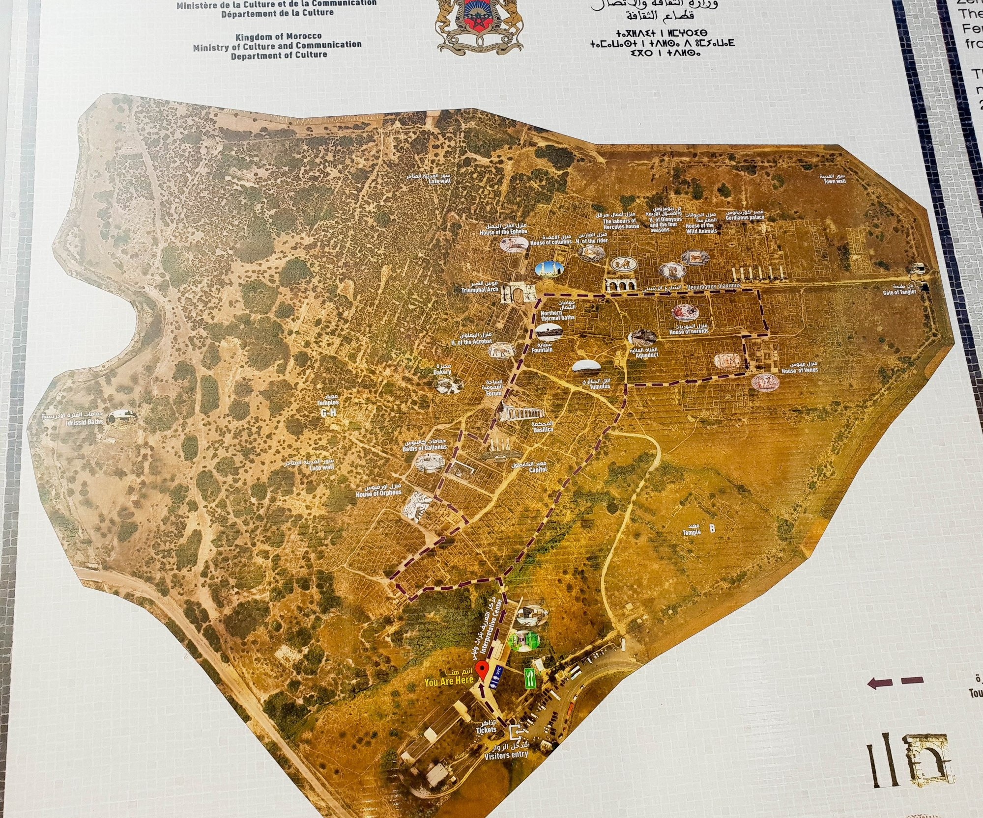 le plan de la ville romaine Volubilis au Maroc