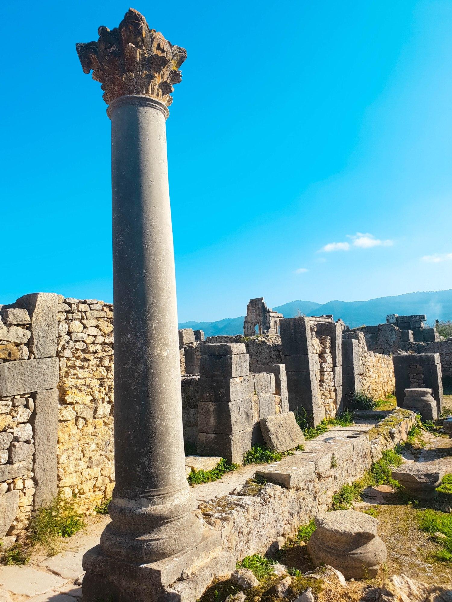 Une colonne et des édifices en ruines sur le site archéologique de Volubilis