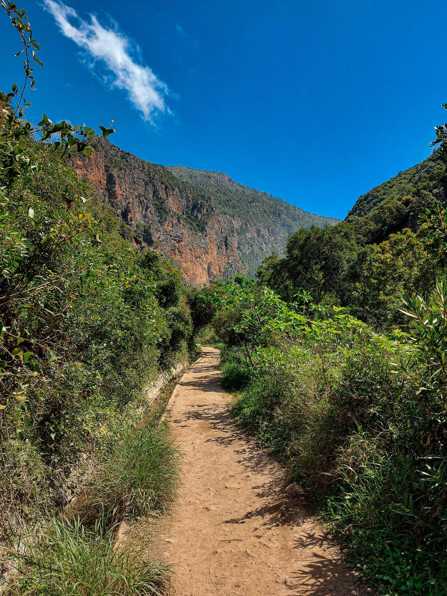Un sentier au milieu de la forêt verdoyante sous un beau ciel bleu de printemps à Akchour