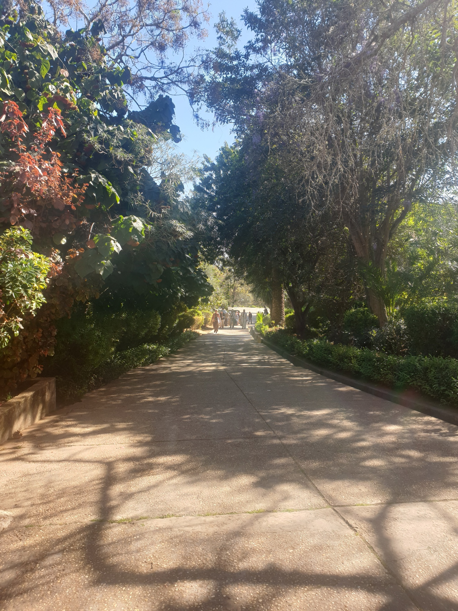 Le jardin de Chellah