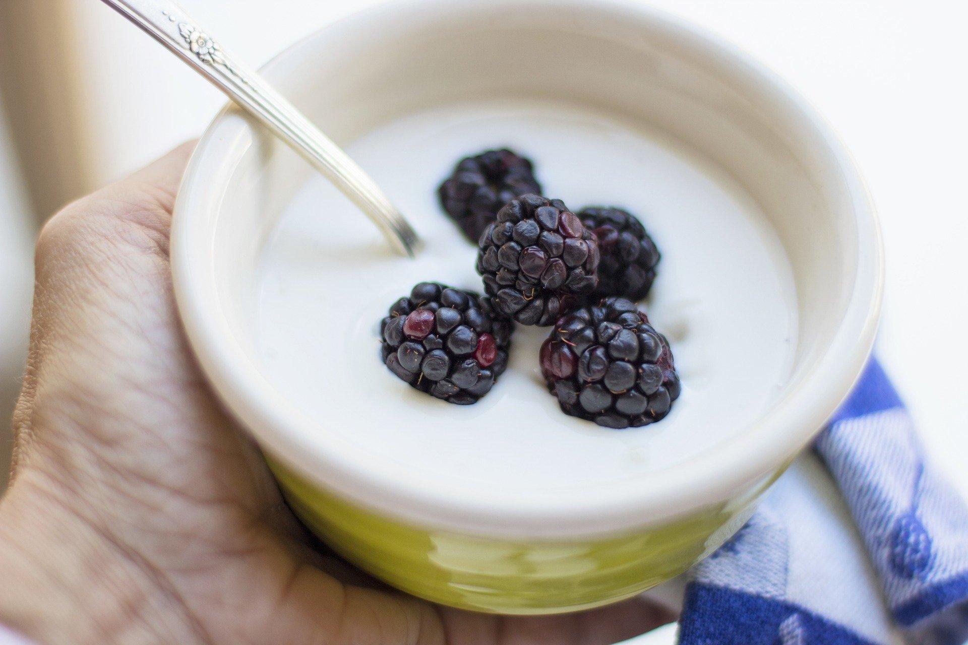 un pot de yaourt avec quelques myrtilles fraiches